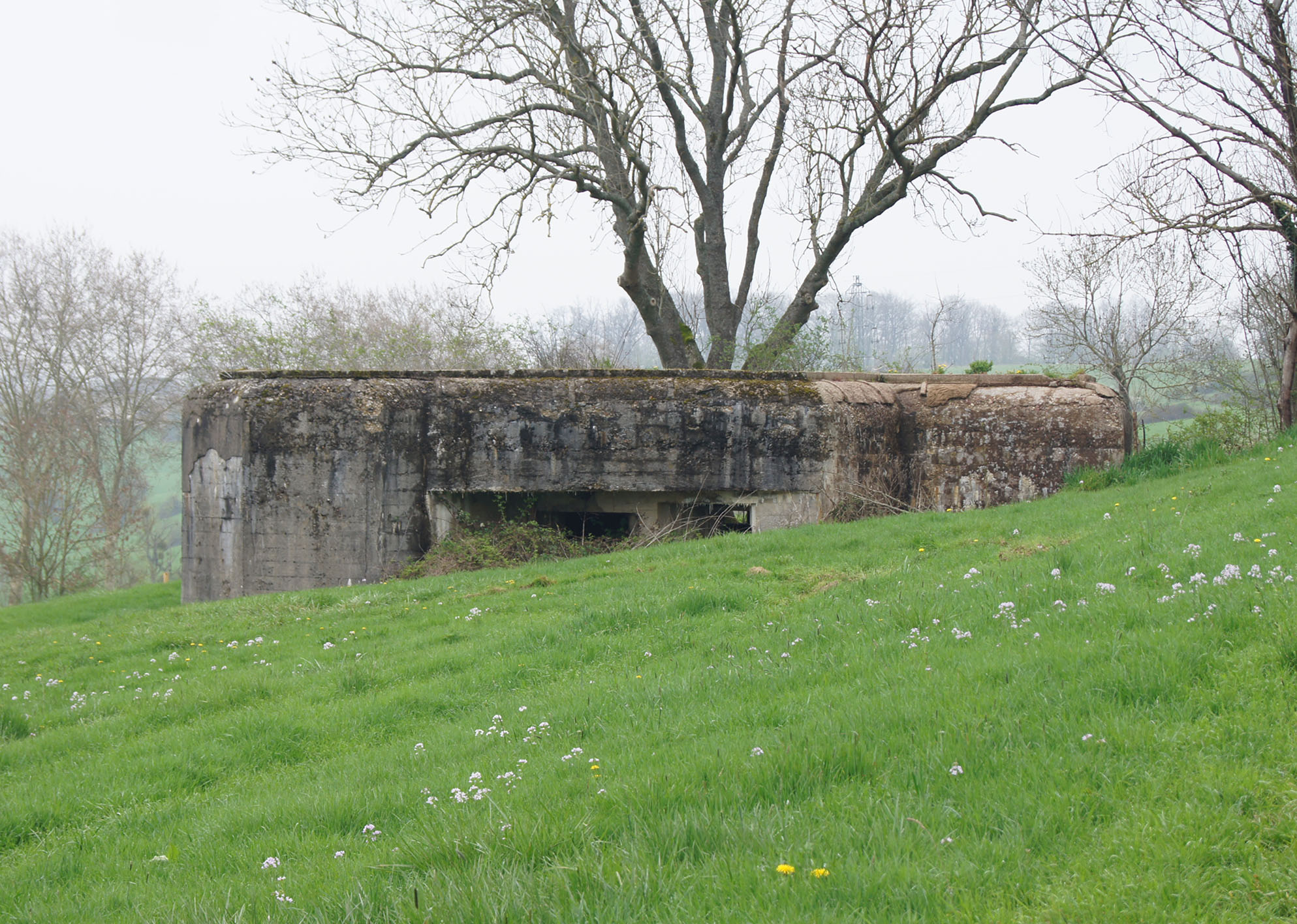 Gun Pit South of the Meuse River at Sedan
