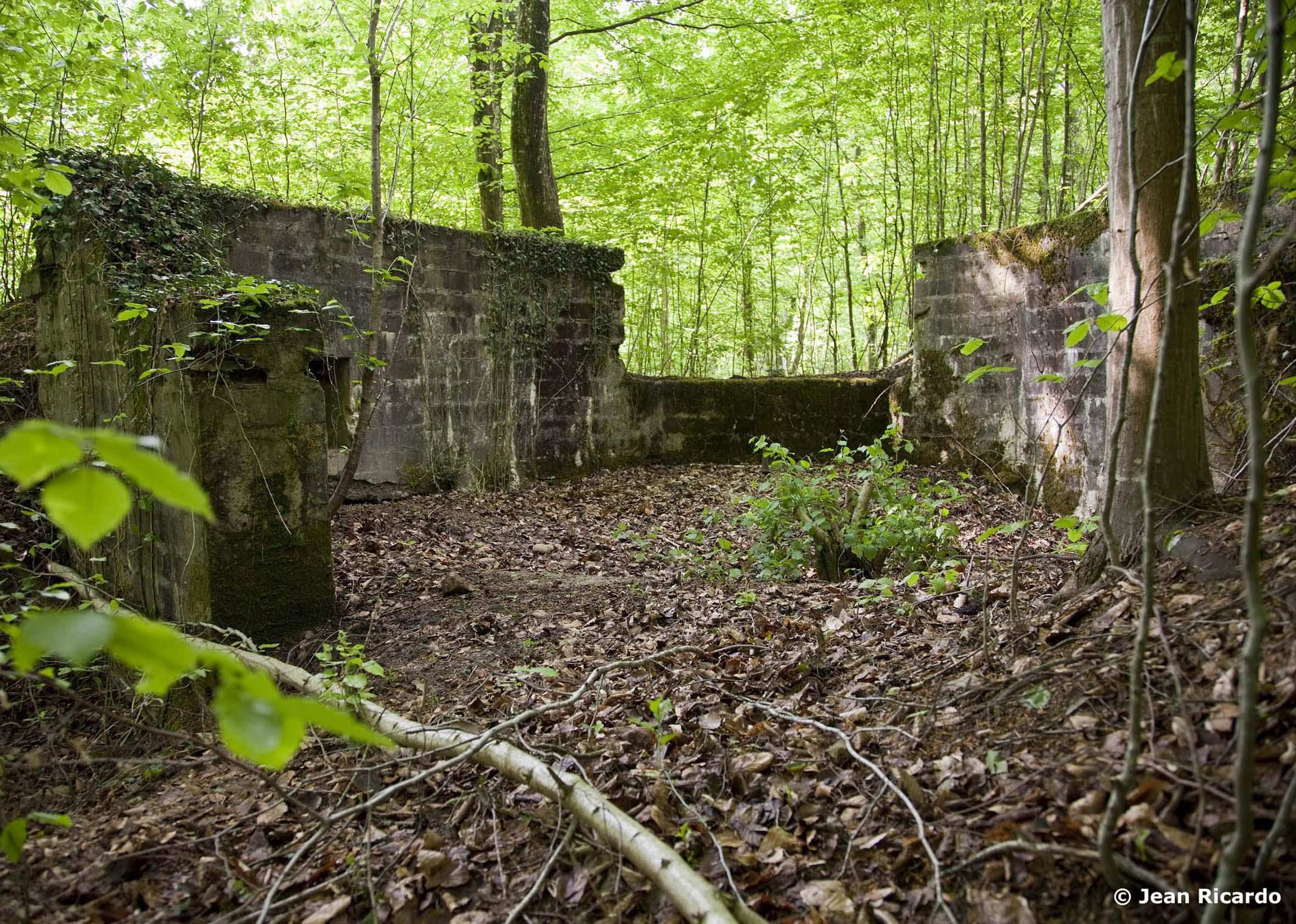 Concrete German Gun Pit in the Argonne Forest